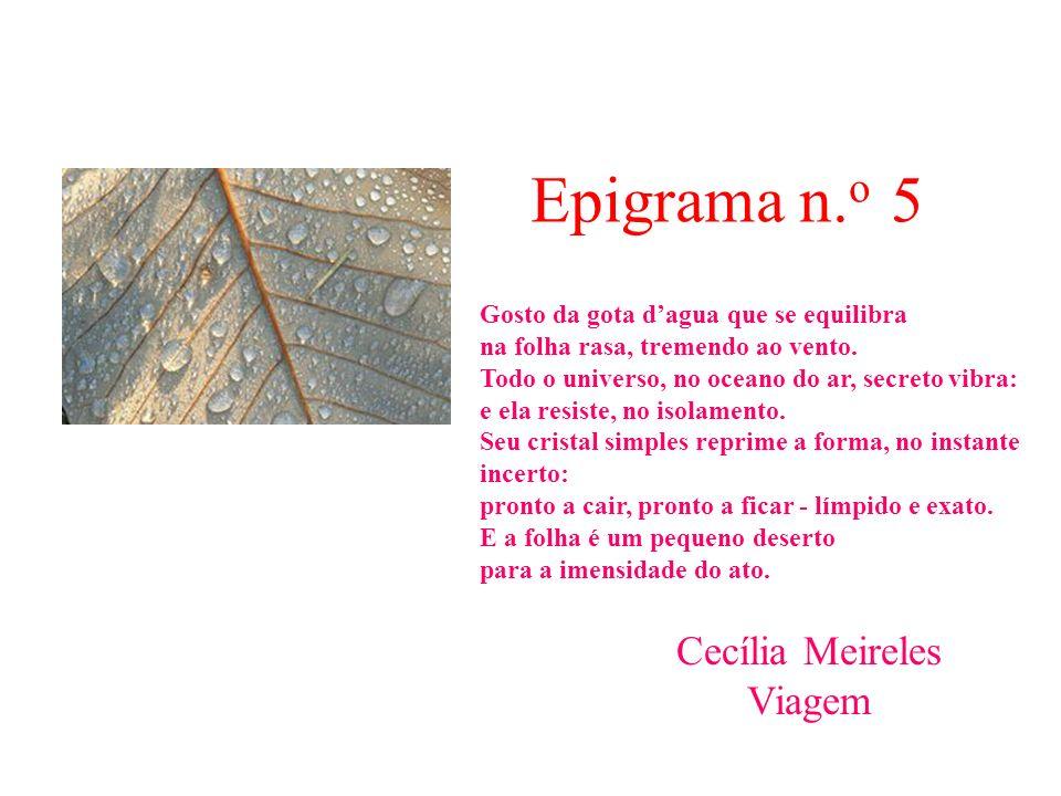 Epigrama n.o 5 Cecília Meireles Viagem