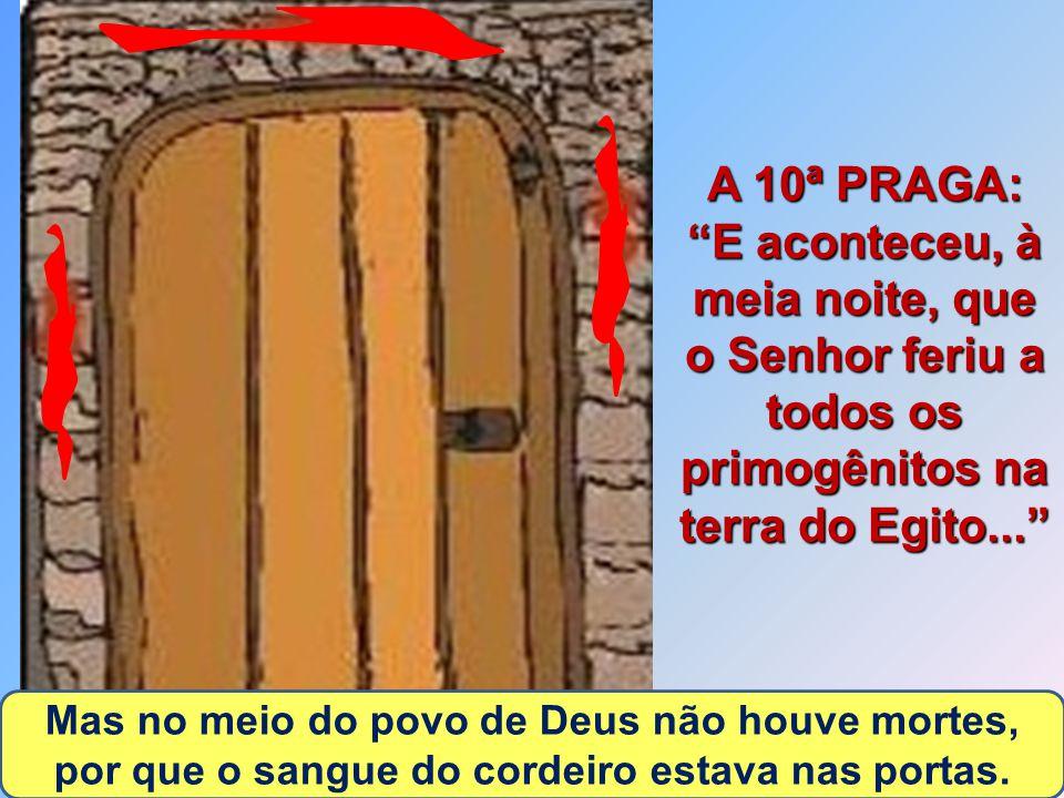 A 10ª PRAGA: E aconteceu, à meia noite, que o Senhor feriu a todos os primogênitos na terra do Egito...