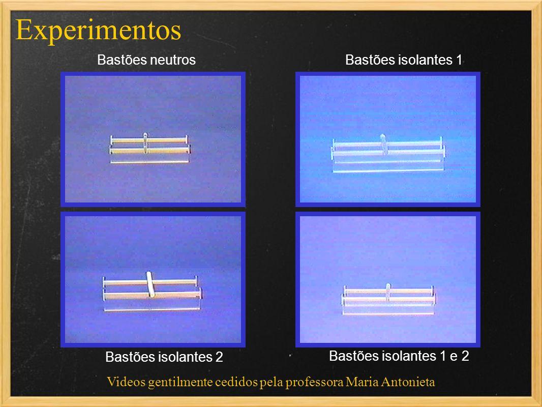 Videos gentilmente cedidos pela professora Maria Antonieta