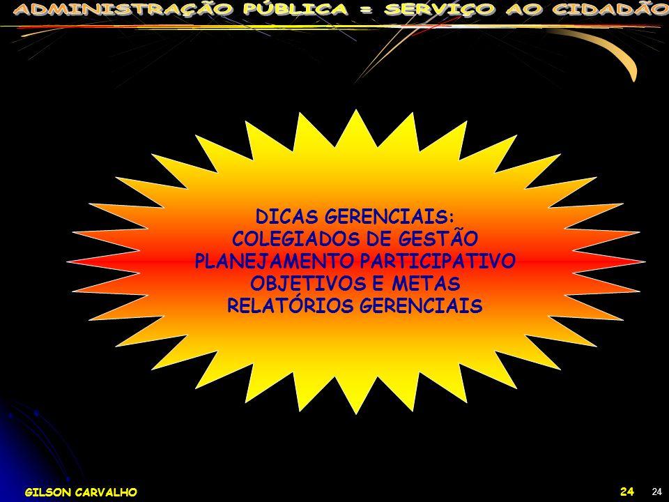 PLANEJAMENTO PARTICIPATIVO RELATÓRIOS GERENCIAIS