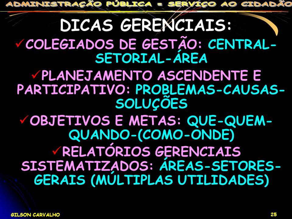 DICAS GERENCIAIS: COLEGIADOS DE GESTÃO: CENTRAL-SETORIAL-ÁREA