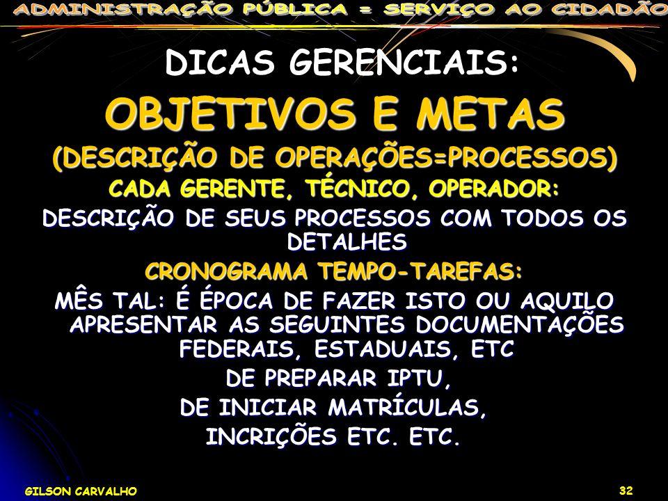 DICAS GERENCIAIS: OBJETIVOS E METAS