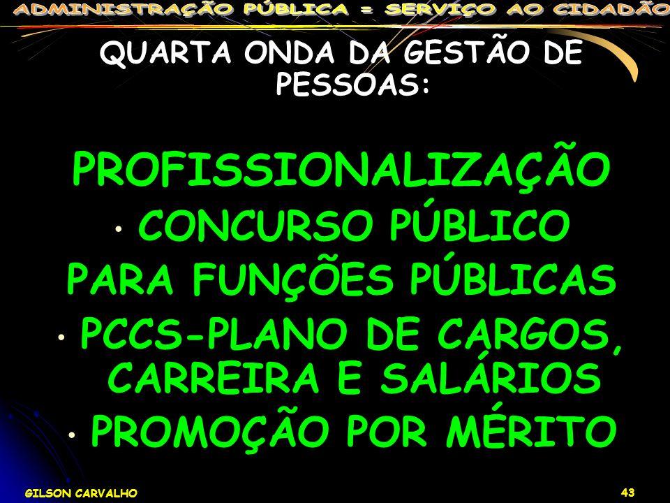 PROFISSIONALIZAÇÃO CONCURSO PÚBLICO PARA FUNÇÕES PÚBLICAS