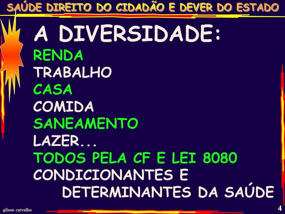 A DIVERSIDADE: RENDA TRABALHO CASA COMIDA SANEAMENTO LAZER...