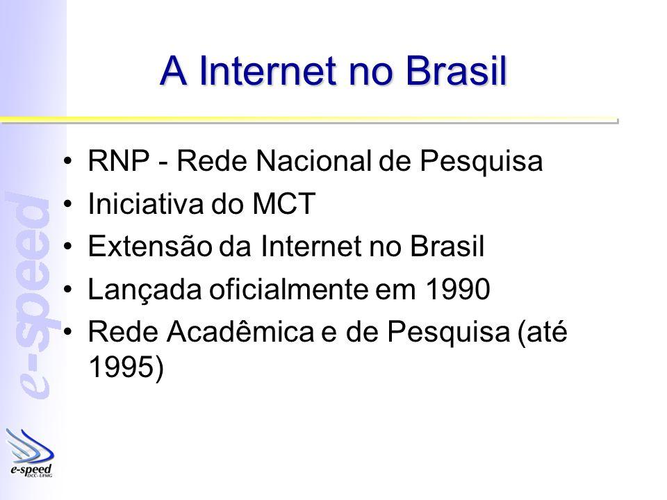 A Internet no Brasil RNP - Rede Nacional de Pesquisa Iniciativa do MCT