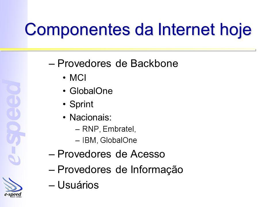 Componentes da Internet hoje