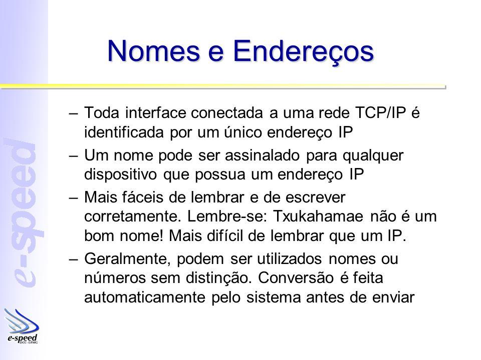 Nomes e Endereços Toda interface conectada a uma rede TCP/IP é identificada por um único endereço IP.