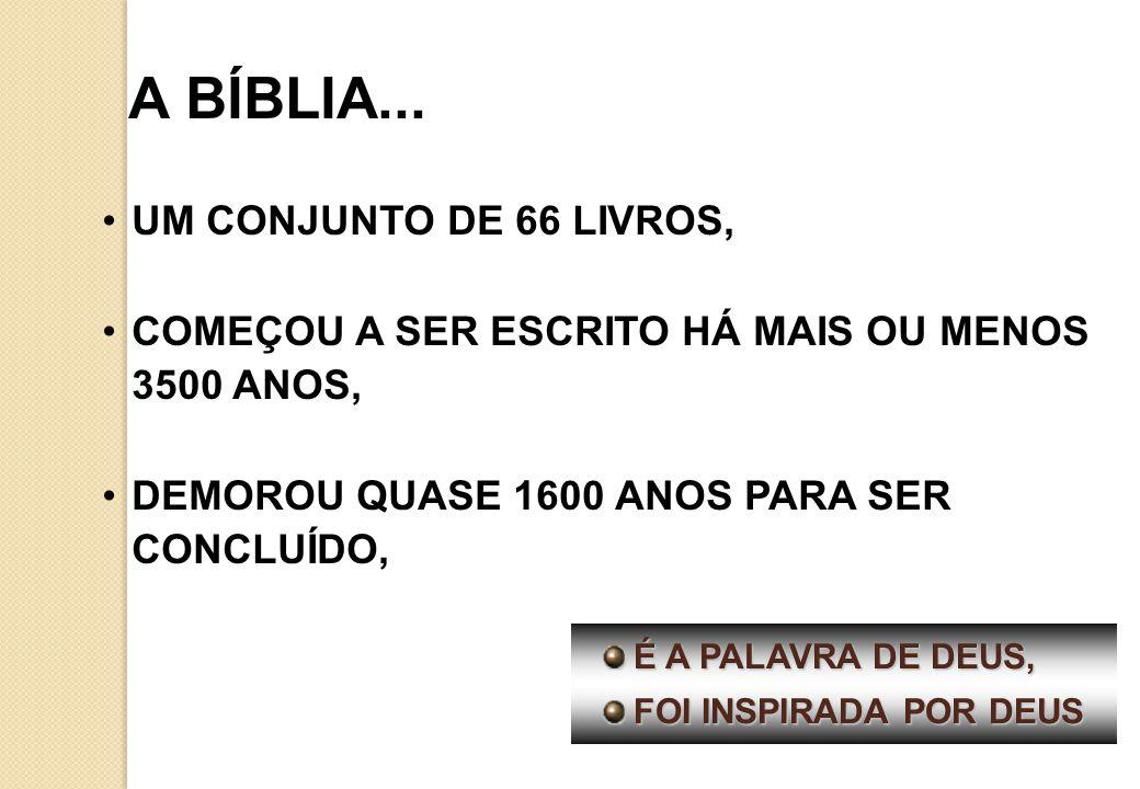 A BÍBLIA... UM CONJUNTO DE 66 LIVROS,