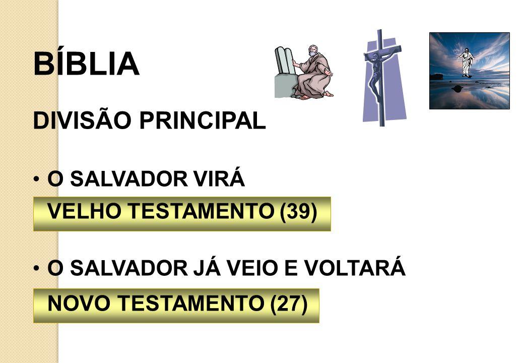 BÍBLIA DIVISÃO PRINCIPAL O SALVADOR VIRÁ VELHO TESTAMENTO (39)