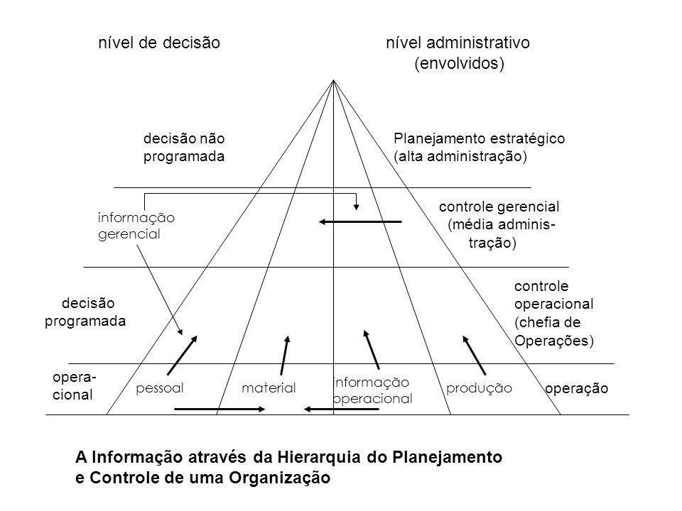 A Informação através da Hierarquia do Planejamento