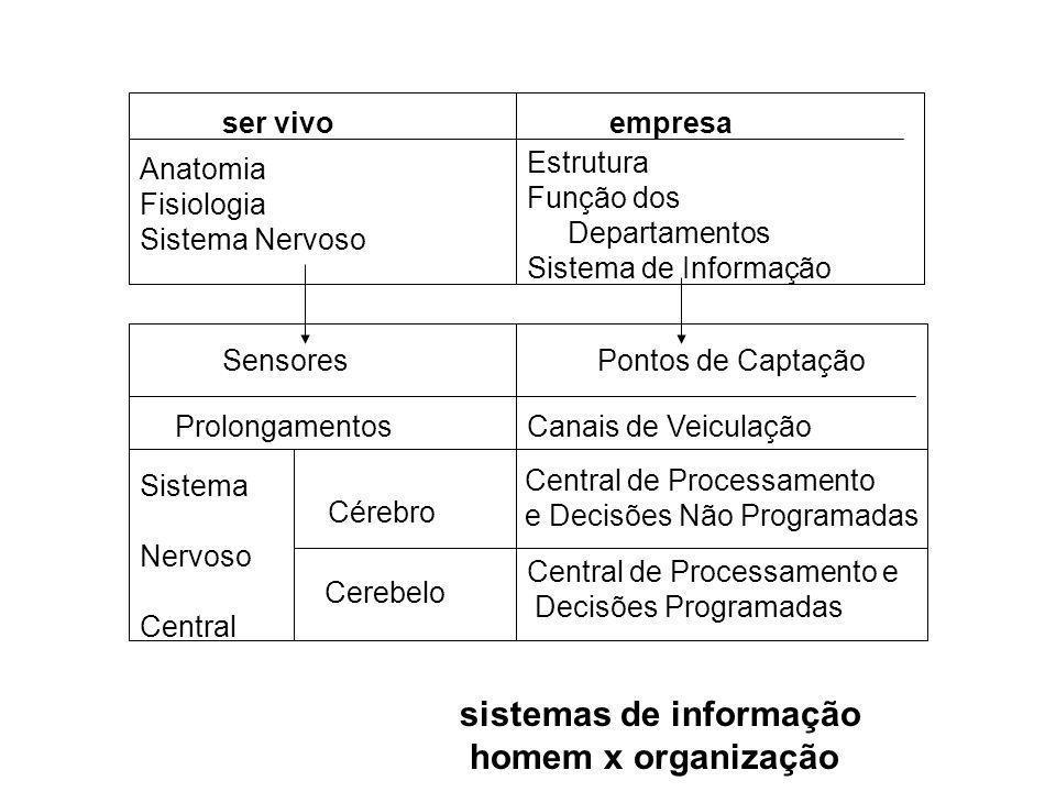 sistemas de informação homem x organização
