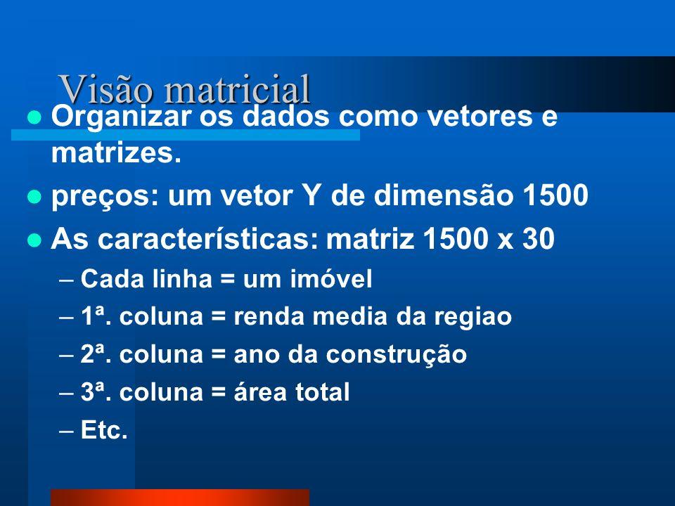 Visão matricial Organizar os dados como vetores e matrizes.