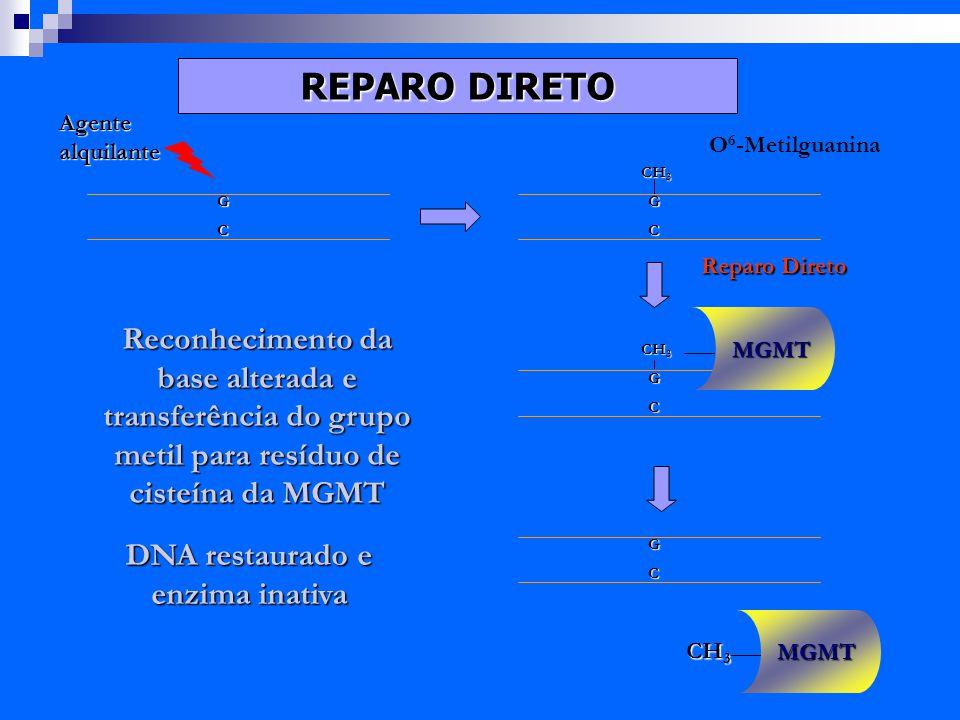 Exames de DNA revelam condenações erradas baseadas