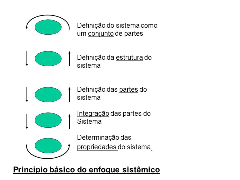 Princípio básico do enfoque sistêmico