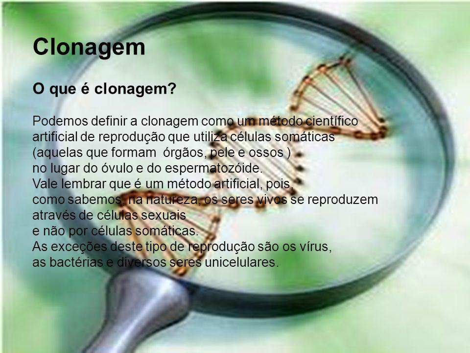 Clonagem O que é clonagem
