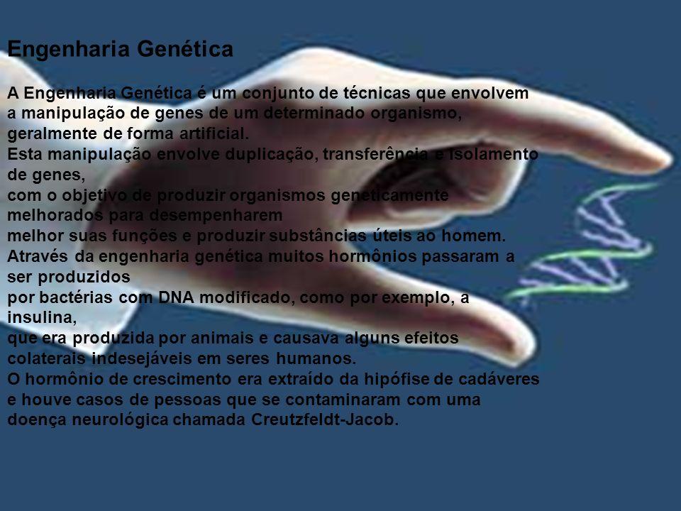 Engenharia Genética A Engenharia Genética é um conjunto de técnicas que envolvem.