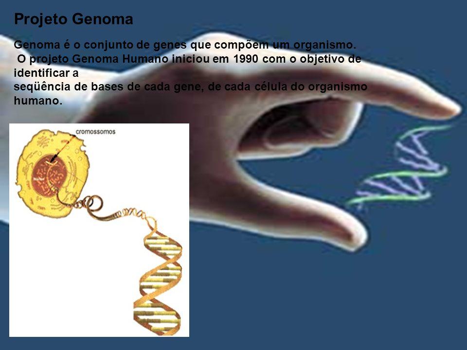 Projeto Genoma Genoma é o conjunto de genes que compõem um organismo.