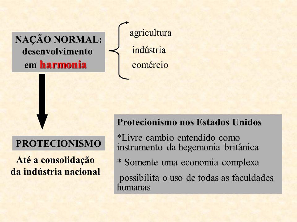 agricultura NAÇÃO NORMAL: desenvolvimento. em harmonia. indústria. comércio. PROTECIONISMO. Até a consolidação.