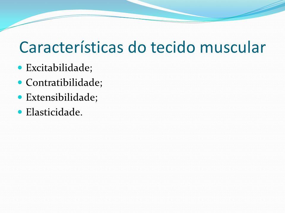 Características do tecido muscular