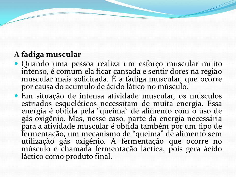 A fadiga muscular