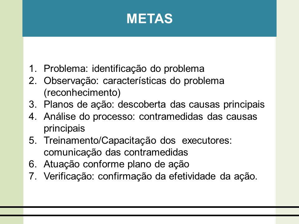 METAS Problema: identificação do problema