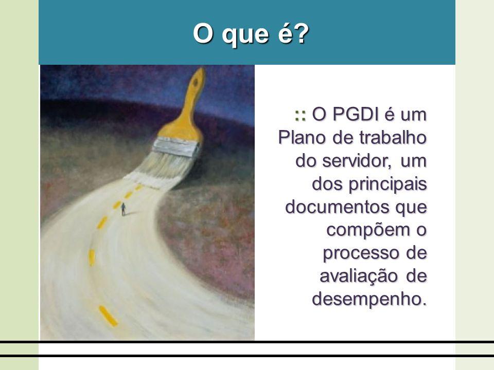 O que é :: O PGDI é um Plano de trabalho do servidor, um dos principais documentos que compõem o processo de avaliação de desempenho.