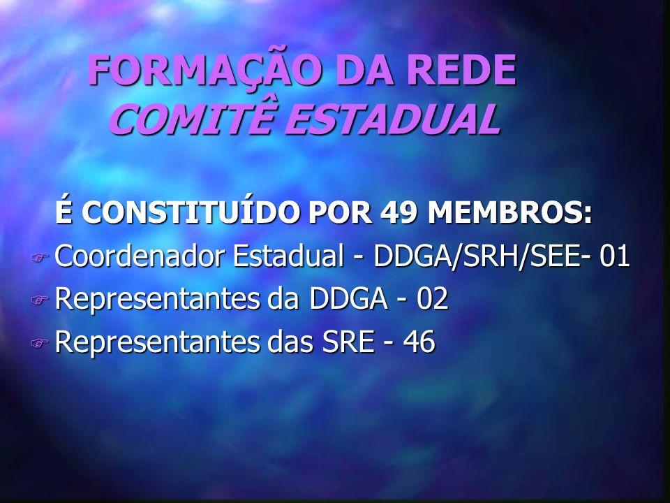 FORMAÇÃO DA REDE COMITÊ ESTADUAL