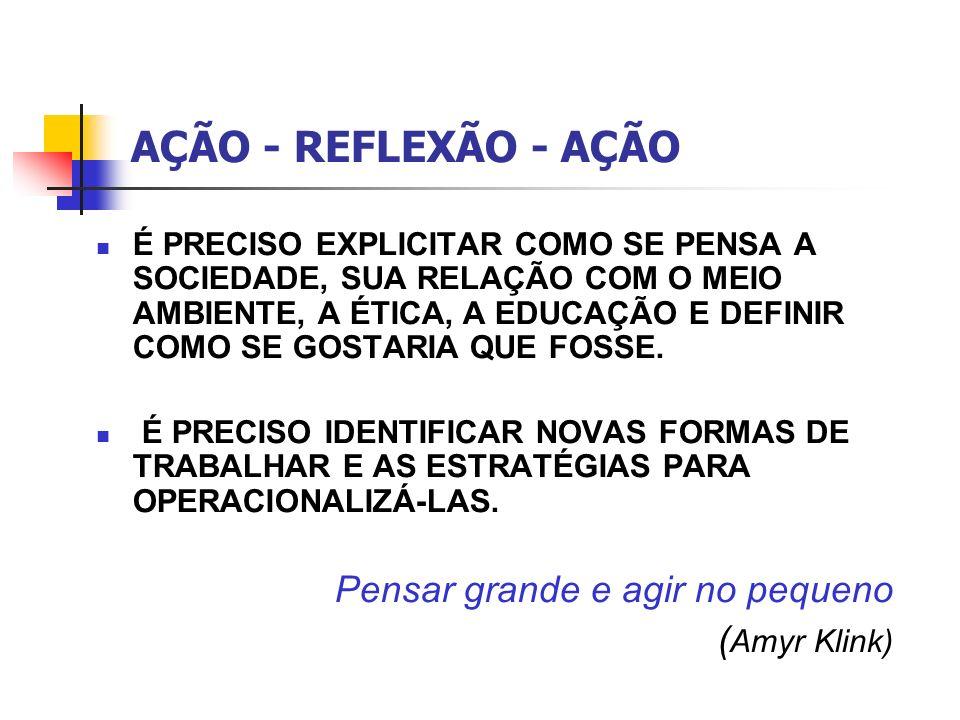 AÇÃO - REFLEXÃO - AÇÃO Pensar grande e agir no pequeno (Amyr Klink)