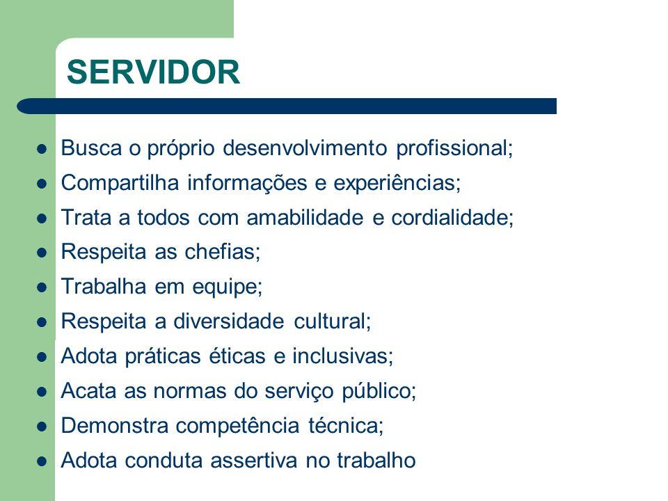 SERVIDOR Busca o próprio desenvolvimento profissional;