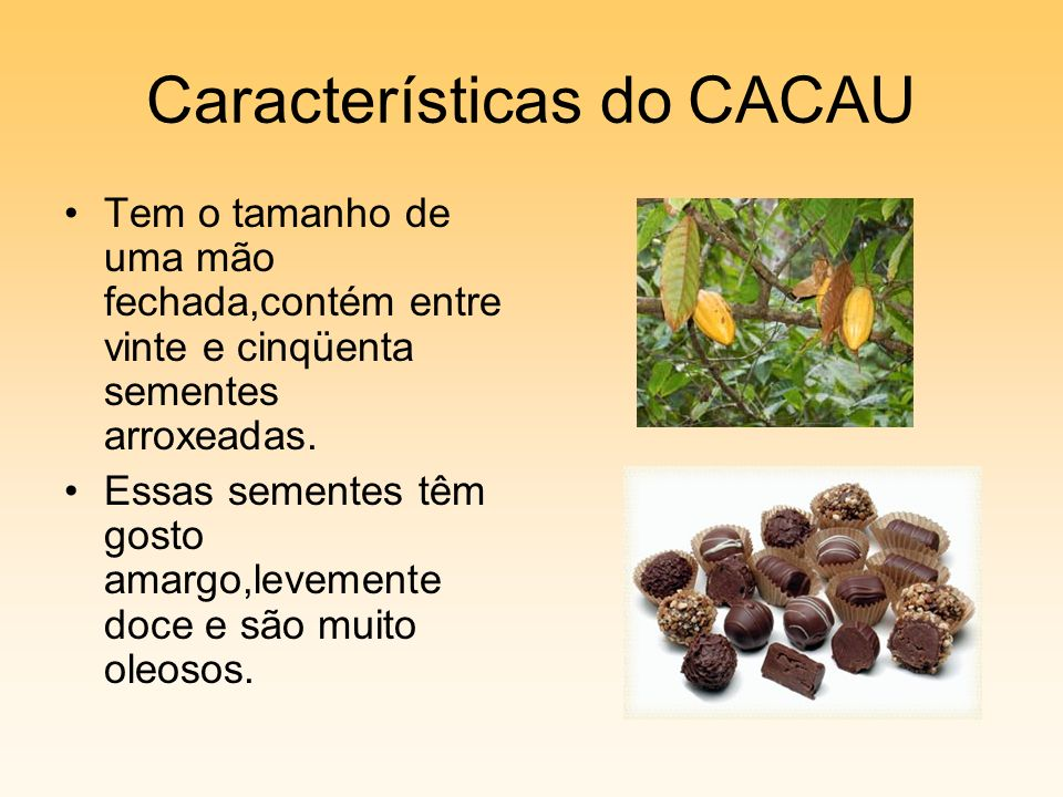 Características do CACAU