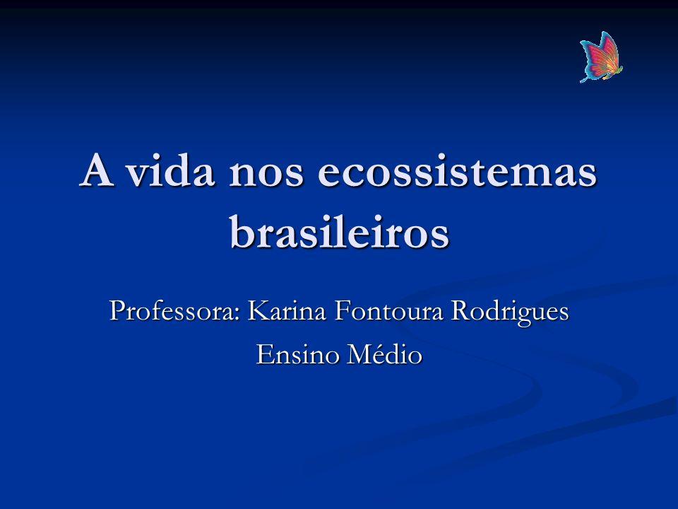 A vida nos ecossistemas brasileiros