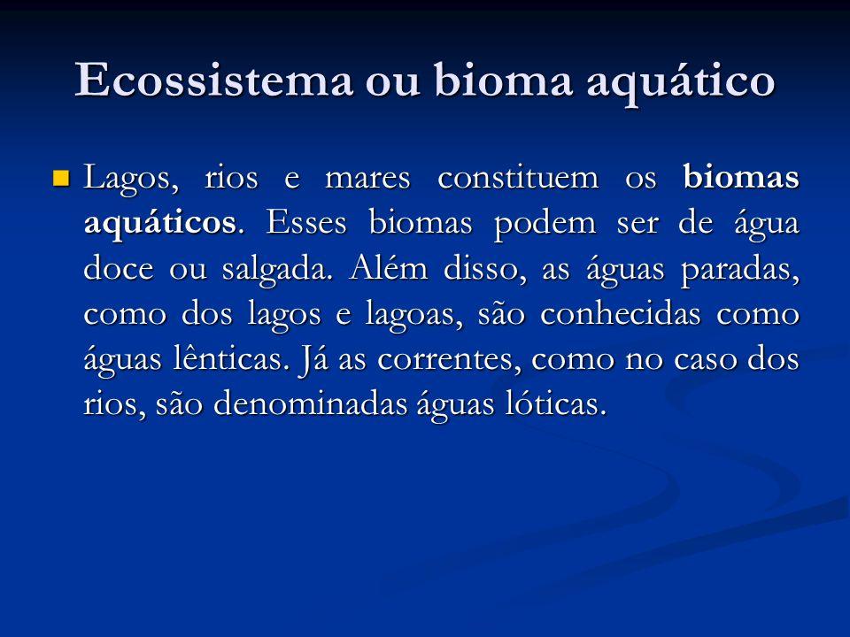 Ecossistema ou bioma aquático