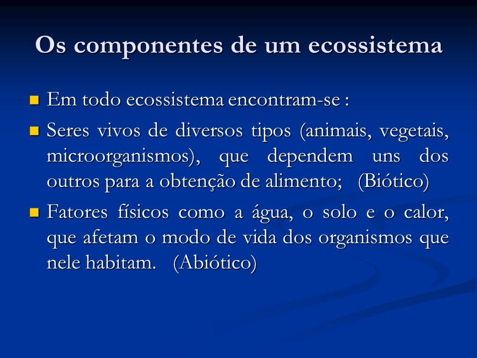 Os componentes de um ecossistema