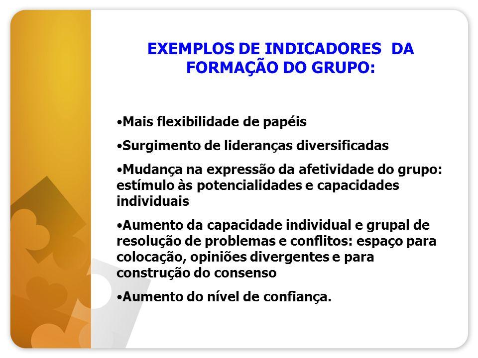 EXEMPLOS DE INDICADORES DA FORMAÇÃO DO GRUPO: