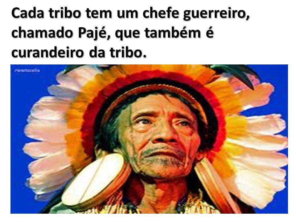 Cada tribo tem um chefe guerreiro, chamado Pajé, que também é curandeiro da tribo.