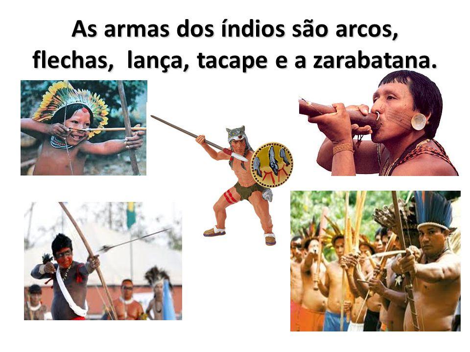 As armas dos índios são arcos, flechas, lança, tacape e a zarabatana.