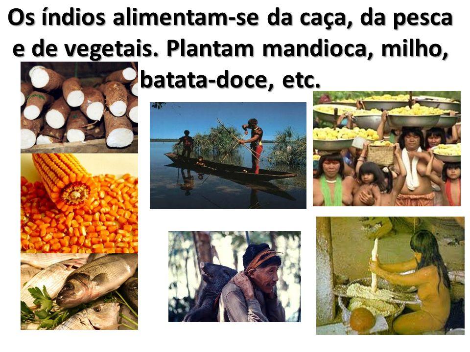 Os índios alimentam-se da caça, da pesca e de vegetais