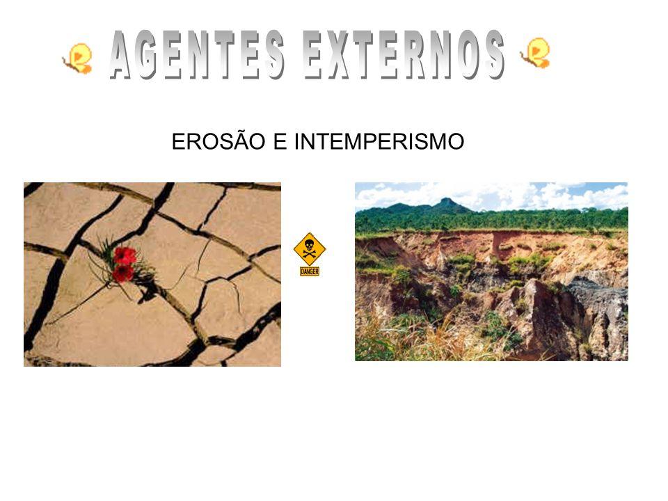 AGENTES EXTERNOS EROSÃO E INTEMPERISMO