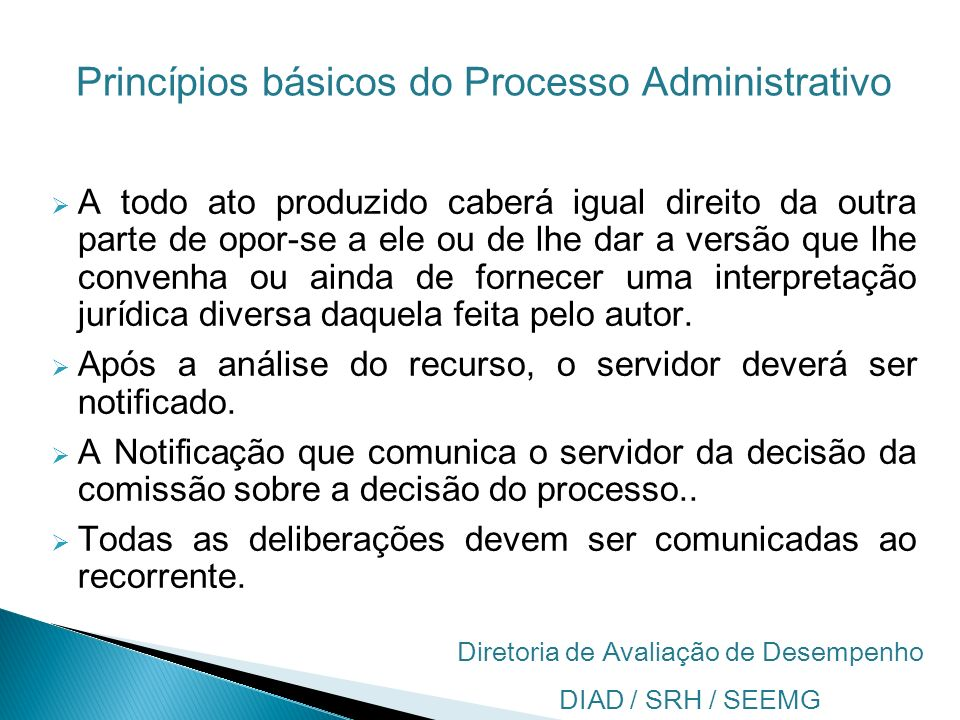 Princípios básicos do Processo Administrativo