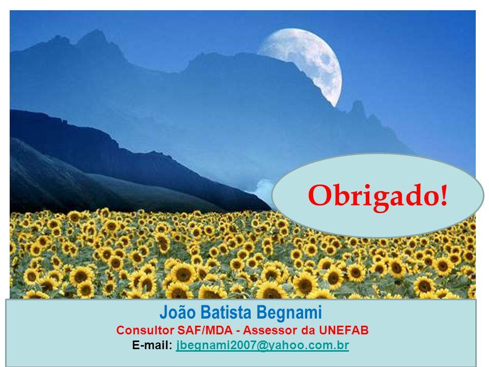 Obrigado! João Batista Begnami Consultor SAF/MDA - Assessor da UNEFAB