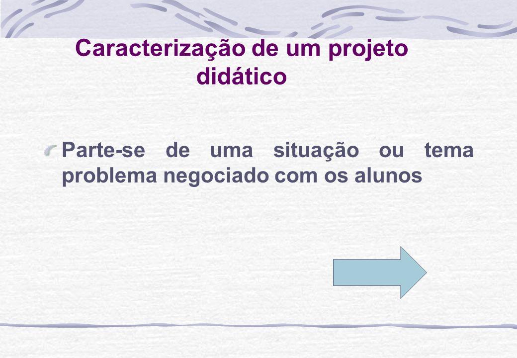 Caracterização de um projeto didático