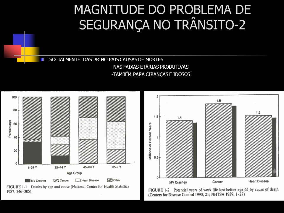 MAGNITUDE DO PROBLEMA DE SEGURANÇA NO TRÂNSITO-2