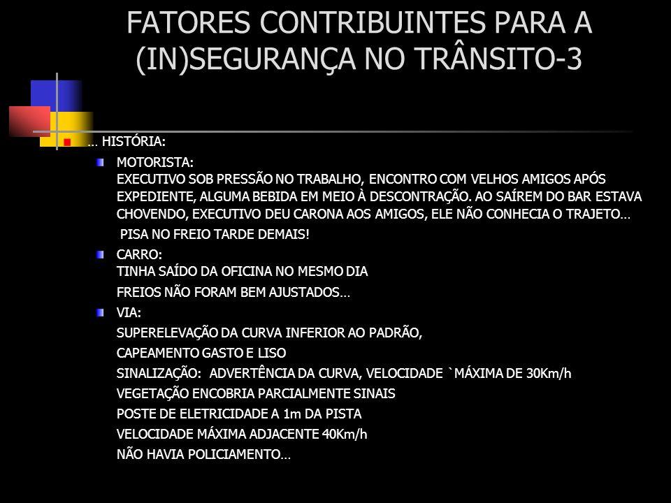 FATORES CONTRIBUINTES PARA A (IN)SEGURANÇA NO TRÂNSITO-3