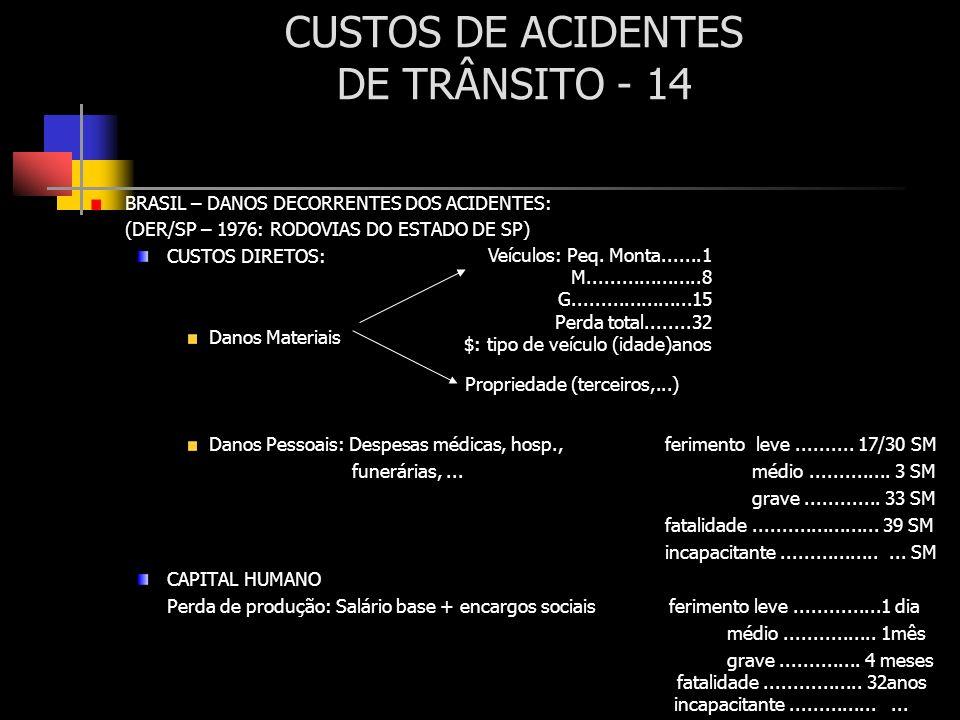 CUSTOS DE ACIDENTES DE TRÂNSITO - 14
