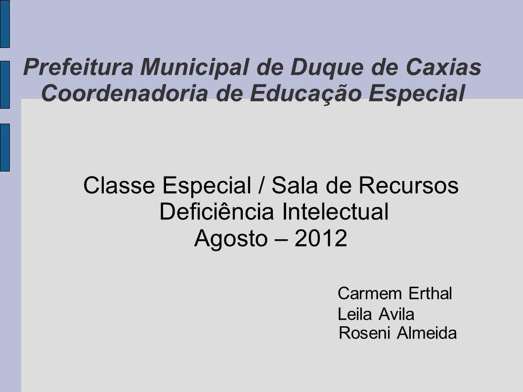 Classe Especial / Sala de Recursos Deficiência Intelectual
