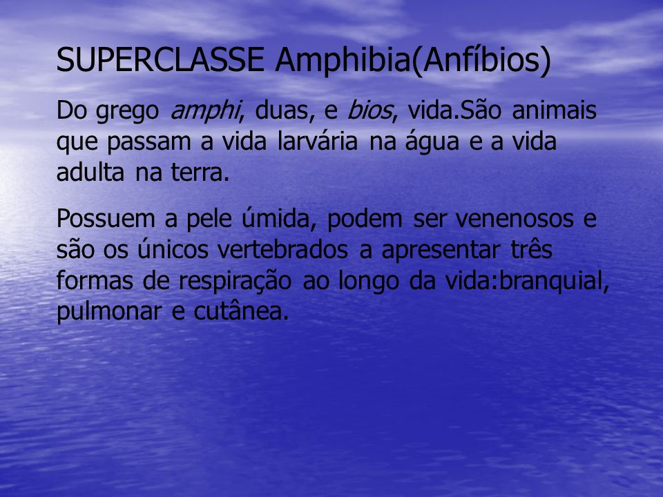 SUPERCLASSE Amphibia(Anfíbios)