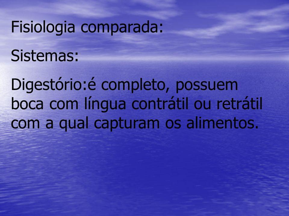 Fisiologia comparada: