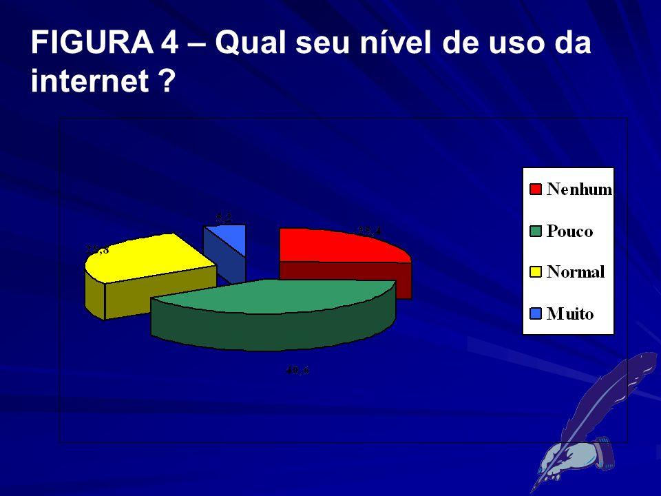 FIGURA 4 – Qual seu nível de uso da internet