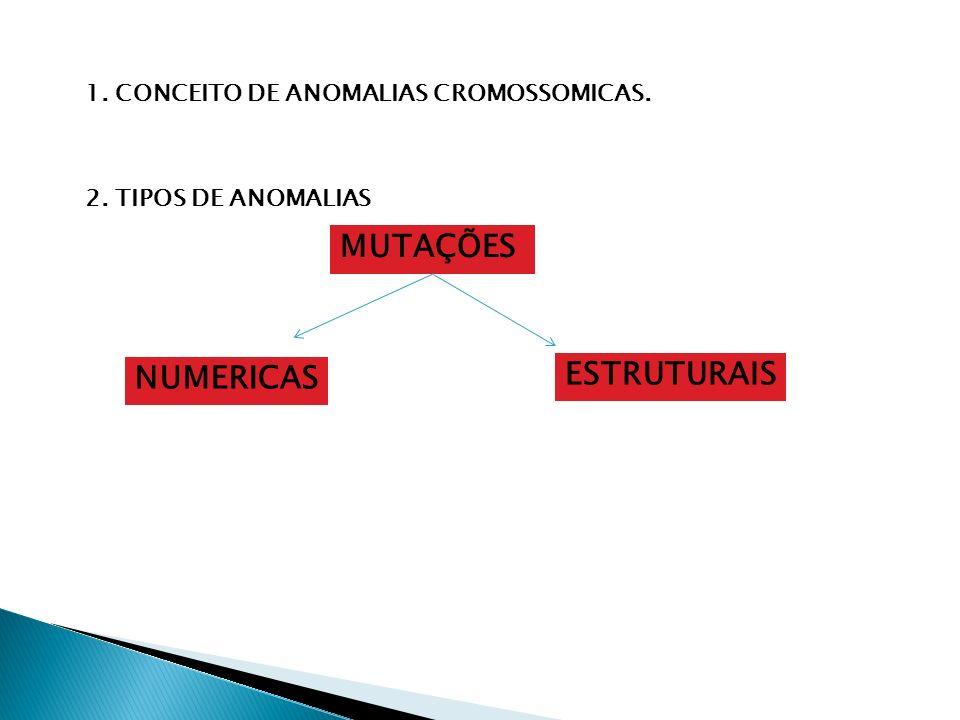 MUTAÇÕES ESTRUTURAIS NUMERICAS 1. CONCEITO DE ANOMALIAS CROMOSSOMICAS.