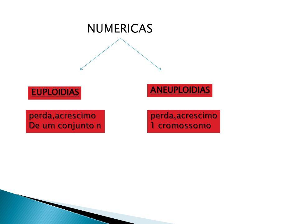 NUMERICAS ANEUPLOIDIAS EUPLOIDIAS perda,acrescimo De um conjunto n